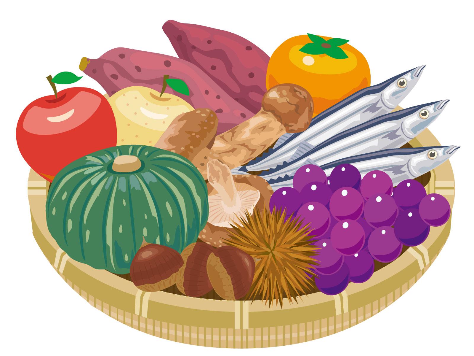 秋の食材のイラスト
